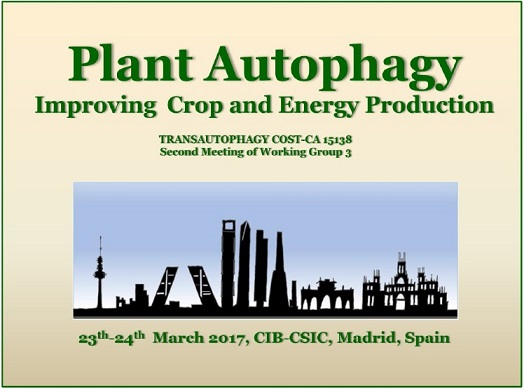 PLANT AUTOPHAGY: Improving Crop and Energy Production