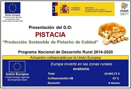 GO PIstacia