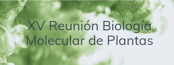 """Sesión BIOVEGEN """"Empresas innovadoras y financiación de I+D"""" en la XV RBMP"""