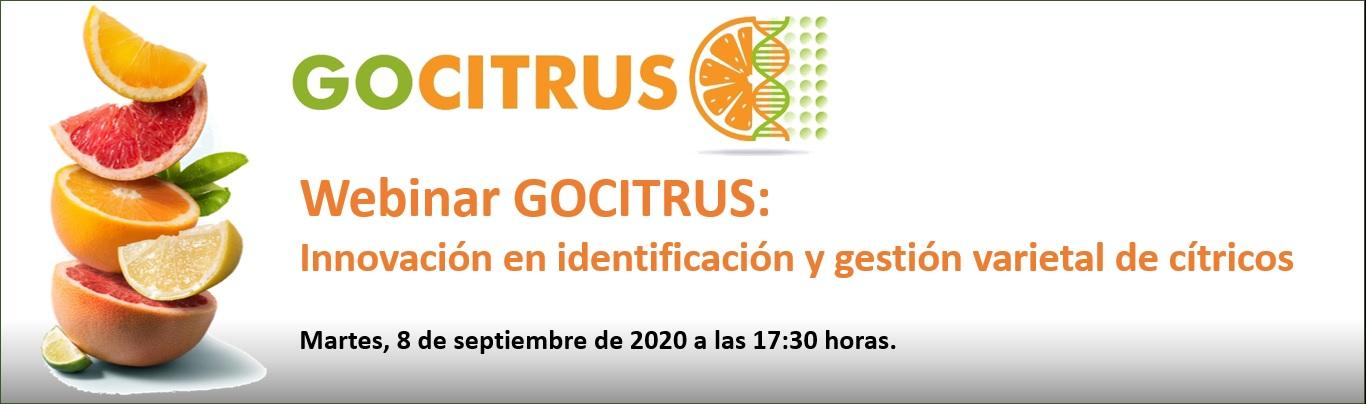 Gocitrus tendrá en 2021 marcadores de ADN para identificar sin posible error a un 25% de las variedades de mandarinas