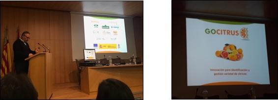 Presentación del Grupo Operativo GOCITRUS en la Jornada Internacional de Mejora Genética de Cítricos