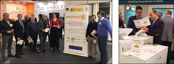 Presentación del Grupo Operativo GOCITRUS en la Feria Internacional FRUIT LOGISTICA