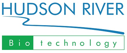 HUDSON RIVER TECHNOLOGY (HRB)