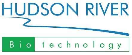 HUDSON RIVER TECHNOLOGY (HRB)