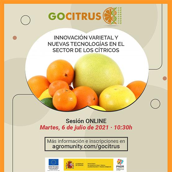 GOCITRUS: Innovación varietal y nuevas tecnologías en el sector de los cítricos